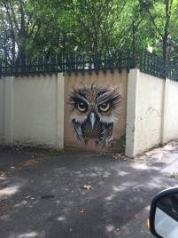 This is one of my favorite, AND my daughter's favorite for sure ! She loves owl, since she was just a mini child. This is a picture taken from our car, as you can see, in traffic jam. Chester Road, Johannesburg.